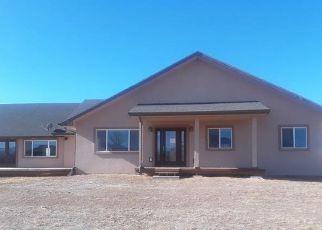 Casa en ejecución hipotecaria in Delta Condado, CO ID: F4255043