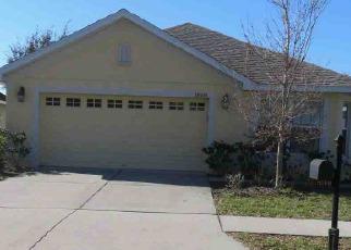 Foreclosure Home in Land O Lakes, FL, 34638,  DAJANA AVE ID: F4258994