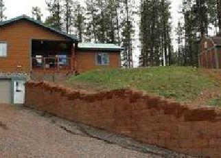 Casa en ejecución hipotecaria in Bayfield, CO, 81122,  ALPINE FOREST DR ID: 6297120