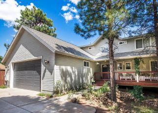 Foreclosure Home in Flagstaff, AZ, 86004,  N BRISTLECONE DR ID: 6314967