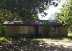 Foreclosed Home in W MAIN DR, Shepherd, TX - 77371