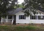Foreclosed Home en JESSIE DUPONT MEMORIAL HWY, Burgess, VA - 22432