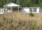 Foreclosed Home en SPEERS VALLEY RD, Duffield, VA - 24244