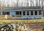 Foreclosed Home in WILLARD RD, Burt, MI - 48417
