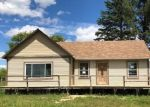 Foreclosed Home en SHERIDAN LINE RD, Croswell, MI - 48422