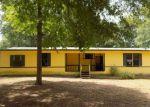 Foreclosed Home en FRANCES DR, Chatsworth, GA - 30705
