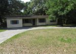 Foreclosed Home en W DIANA ST, Tampa, FL - 33614