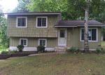 Foreclosed Home en INDIAN RD, Lapeer, MI - 48446
