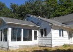 Foreclosed Home in KRUPP RD, Belding, MI - 48809
