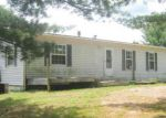 Foreclosed Home in BOERNER RD, Mio, MI - 48647