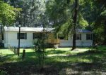 Foreclosed Home en NE MARION RD, Mayo, FL - 32066