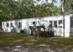 Foreclosed Home en CHANCE CT, Crawfordville, FL - 32327