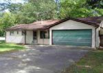 Foreclosed Home en W LUDINGTON DR, Farwell, MI - 48622