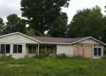 Foreclosed Home in N HODENPYLE DAM RD, Mesick, MI - 49668