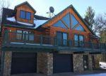 Foreclosed Home en W JONES LAKE RD, Grayling, MI - 49738