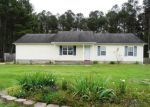 Foreclosed Home en MEADOW FARMS RD, Richlands, NC - 28574