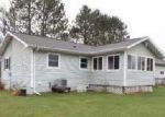 Foreclosed Home in IRON LAKE RD, Iron River, MI - 49935