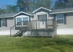 Foreclosed Home en J W MCLEAN RD, Clio, AL - 36017