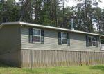 Foreclosed Home en POSEY HOLLOW RD, Berkeley Springs, WV - 25411