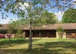 Foreclosed Home en E OLD RITCHIE RD, Lead Hill, AR - 72644