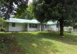 Foreclosed Home en KUMU ST, Pahoa, HI - 96778
