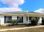 Foreclosed Home en DEERPATH RD, Chipley, FL - 32428