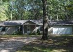 Foreclosed Home in JENNY LN, Stanwood, MI - 49346