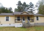 Foreclosed Home en WAYLAND SPRINGS RD, Iron City, TN - 38463