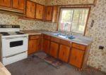 Foreclosed Home en OTTAWA CT, Atlanta, MI - 49709