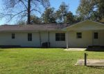 Foreclosed Home en WILCOX ST, Chauncey, GA - 31011