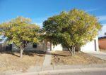 Foreclosed Home en CASITA, San Elizario, TX - 79849