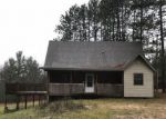 Foreclosed Home en W RHOBY RD, Lake City, MI - 49651