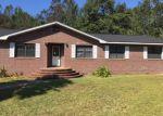 Foreclosed Home en DEWEY JOHNSON WAY, Gretna, FL - 32332