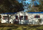 Foreclosed Home en SW MCGRIFF LN, Lake City, FL - 32024