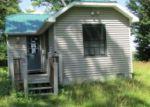 Foreclosed Home en LONG POINT RD, Germfask, MI - 49836