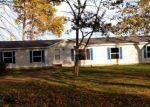Foreclosed Home en LIGHTHOUSE RD, Port Hope, MI - 48468