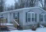 Foreclosed Home en E 128TH ST, Grant, MI - 49327