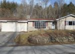 Foreclosed Home en SCHWALLIE RD, Ripley, OH - 45167
