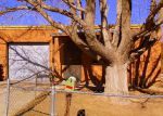 Foreclosed Home en LA POBLANA RD NW, Albuquerque, NM - 87107