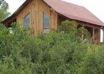 Foreclosed Home en DEER TRL, Pagosa Springs, CO - 81147