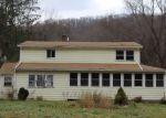 Foreclosed Home en WILCOX AVE, Roscoe, NY - 12776