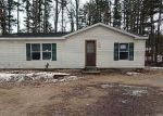 Foreclosed Home in SHELBY ST, Fife Lake, MI - 49633