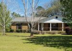 Foreclosed Home in LOWER RIDGE RD, Monroeville, AL - 36460