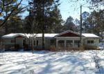 Foreclosed Home en W COUNTY ROAD B, Hayward, WI - 54843