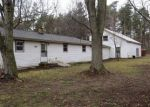 Foreclosed Home in GEIGER CT, Belding, MI - 48809