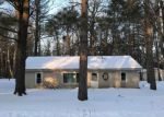 Foreclosed Home in MAPES RD, Mio, MI - 48647