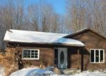 Foreclosed Home en MORNING STAR DR, Rock Creek, OH - 44084