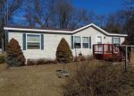 Foreclosed Home in JORDAN LN, Wisconsin Dells, WI - 53965