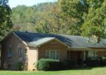 Foreclosed Home en MIDDLE RIVER RD, Stanardsville, VA - 22973