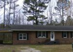 Foreclosed Home in LUBY HILL RD, Maple Hill, NC - 28454